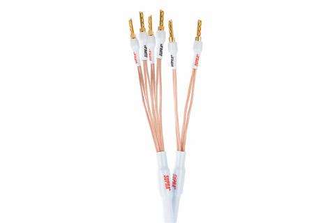 Supra XL Annorum, bi-wire