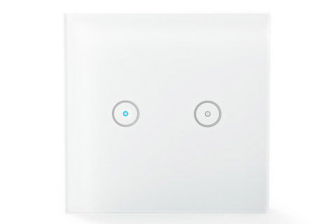 SmartLife Wi-Fi switch for light, double - Front
