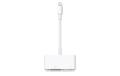 VGA – Apple Lightning/30 pin